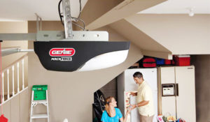 Screw Drive Garage Door Opener image